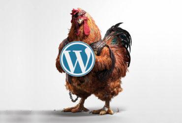 Примеры крутых сайтов на WordPress