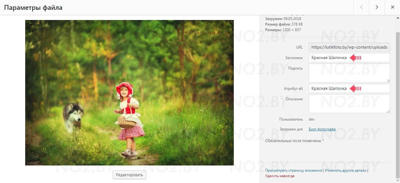 Как добавить изображение (файл) в WordPress
